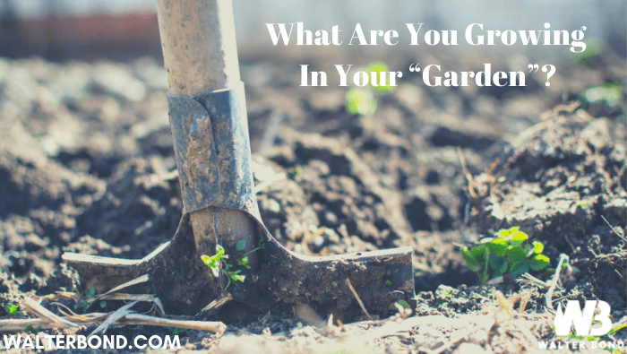 "What Are You Growing In Your ""Garden""?"